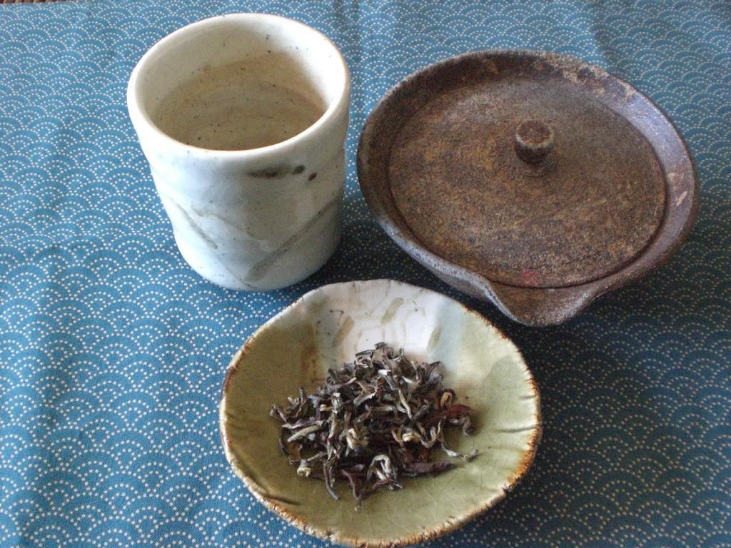 Nepal Erdbeben: Wie Teefreunde helfen können
