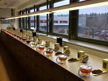 """Was man bei der Ausbildung zum """"Tee-Sommelier"""" lernen kann Teil I"""