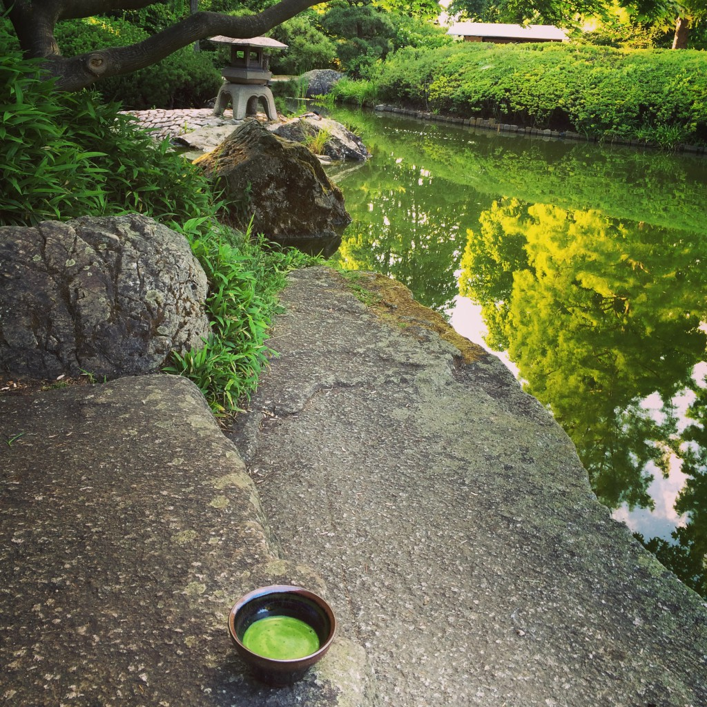 Matcha im japanischen Garten