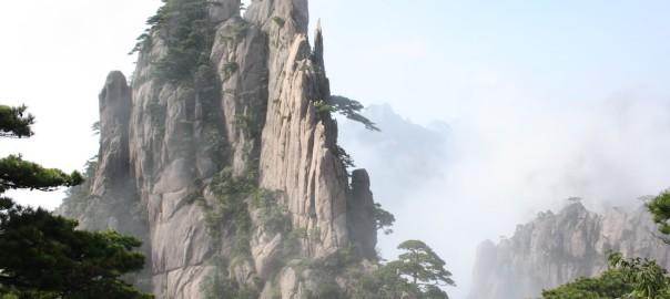 Anhui Huangshan Maofeng Yun Wu