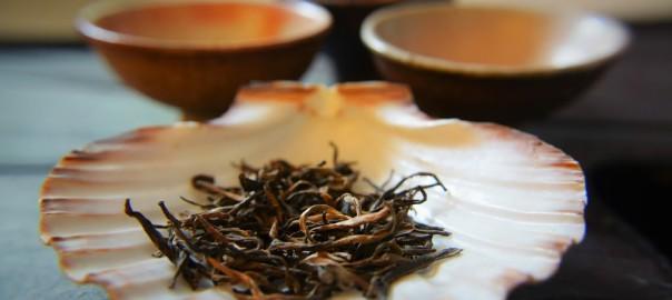 Zehn gute Gründe, weswegen Tee auch für dich ein lebensbereicherndesGetränk sein kann